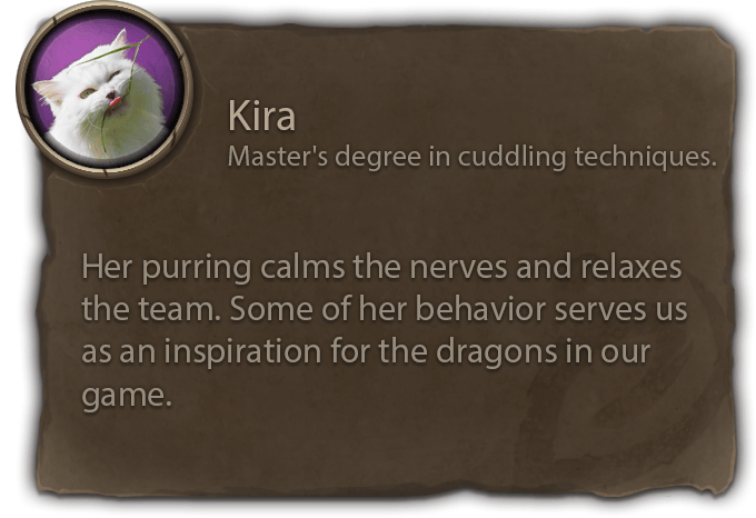 Azura Developer Team Supporter Kira